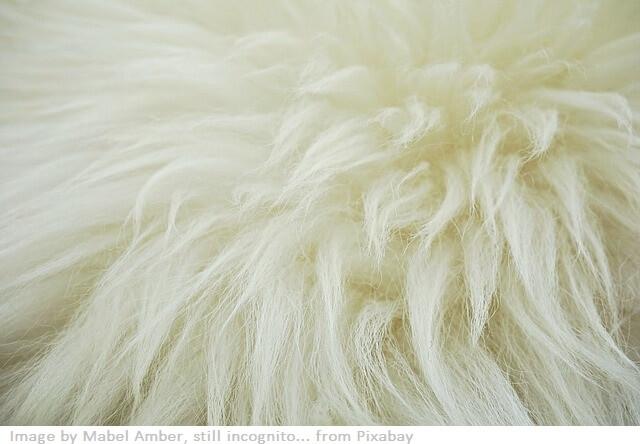 fibras animales